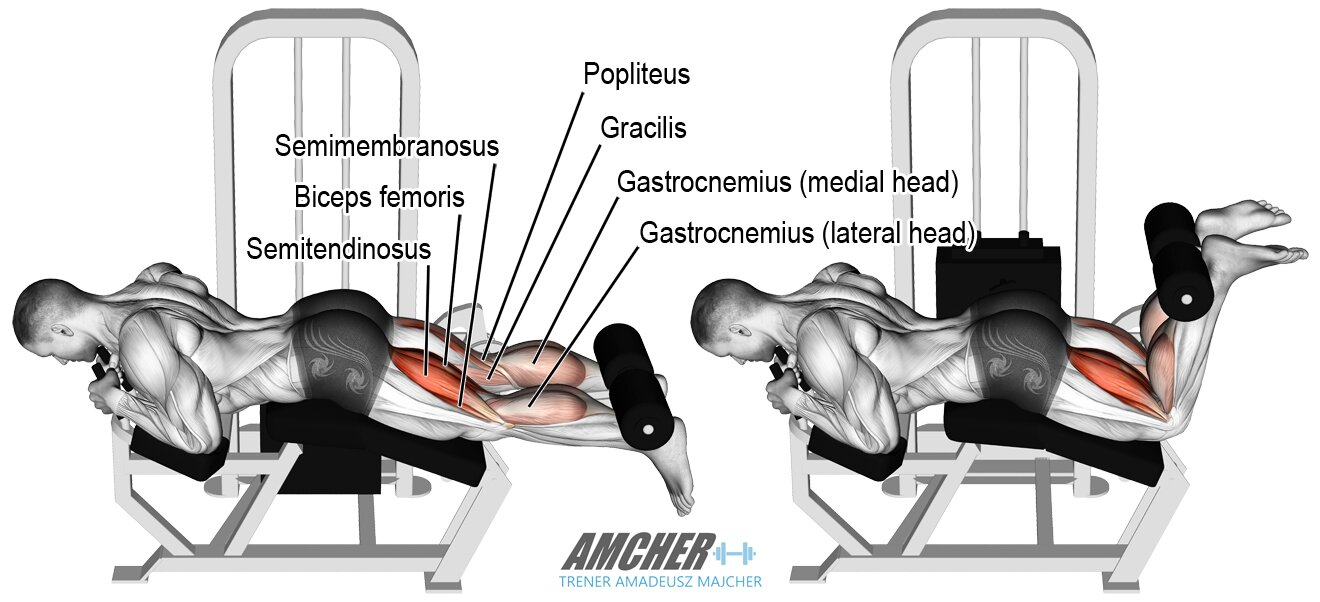 Uginanie podudzi na maszynie - trening nóg