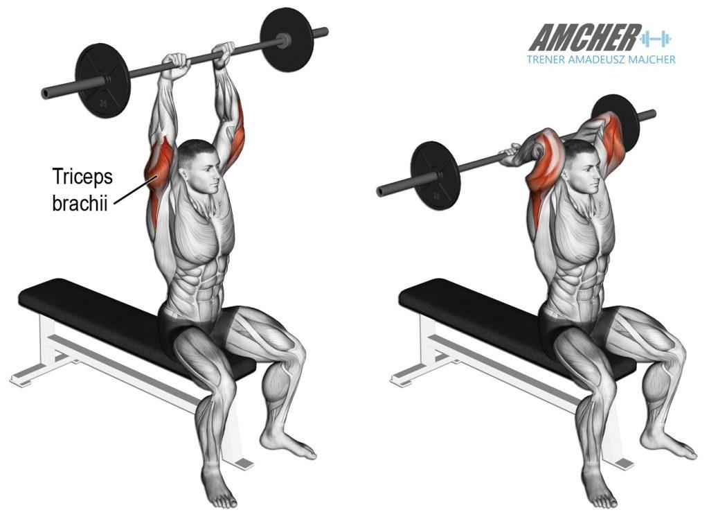 Trening tricepsów - wyciskanie francuskie ze sztangą siedząc.