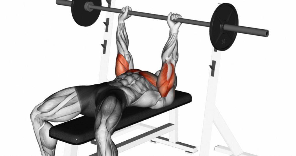 Trening tricepsów - wyciskanie wąskim chwytem leżąc.
