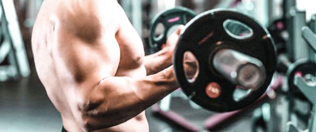 Uginanie ramion ze sztangą stojąc -ćwiczenie na biceps